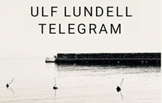 Ulf Lundell - Telegram