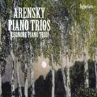 Piano trio no 1 in D minor op 32